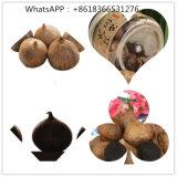 Vollständiger schwarzer Knoblauch für heißen Verkauf