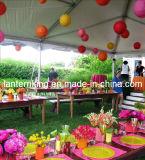 Decorazione del giardino/mestieri di carta/lanterna cinese (F65)