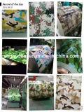 Impression PPGI en acier galvanisé revêtue de fleurs colorées de Shandong Construction de matériaux de construction en Chine
