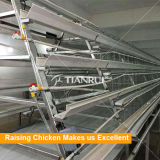 Автоматическое самой лучшей конструкции Tianrui прочное тип клетка цыпленка слоя батареи