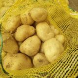 Fournisseur d'or de la nouvelle récolte de pommes de terre fraîches en provenance de Chine