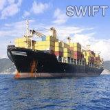 Experto y barata de fletes marítimos puerta a puerta desde China a Francia