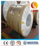 Fonte diretamente 310S do fabricante da bobina de placa do aço inoxidável