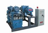 Pompe à vide à pistons rotatifs à double étage pour machine de déshydratation d'huile