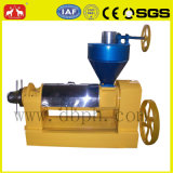 500kg/H Peanut 또는 Rapeseed/Sunflower Oil Expeller