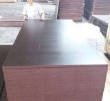 Materiais de construção Shuttering enfrentados película da madeira compensada do núcleo do Poplar de Brown (15X1220X2440mm)