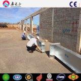 Gruppo di lavoro della tettoia della struttura d'acciaio dell'Pre-Assistente tecnico (MV-07)