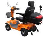 電気移動性のスクーター(EML46A)