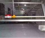 Cage Brooding de vente chaude de poulet avec le système automatique de matériel pour la ferme avicole (un type bâti)