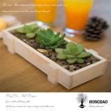 El Succulent al por mayor de encargo de Hongdao planta el almacenaje que empaqueta el rectángulo de madera para Gift_D