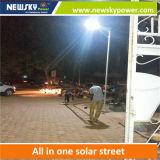 jardín solar al aire libre 30With40With60W que enciende el alumbrado público de la inundación solar del LED