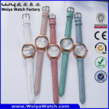 ODM-lederne Brücke-Quarz-Armbanduhr für Frau (WY-095A)