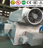Motor do moinho de rolamento da alta qualidade
