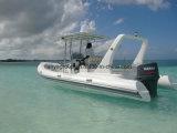 Barca della nervatura di Liya 22feet con la nervatura gonfiabile del crogiolo di motore
