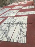 De Chinese Witte Marmeren Tegel van Italië Arabascata voor Muur en Vloer