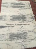 A Itália Arabascata chinês para a parede de azulejos em mármore branco e piso