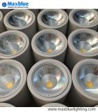 25W Downlight LED montées en surface d'éclairage LED Spotlight