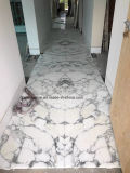 Мраморные плитки Arabescato строительных материалов (белый)