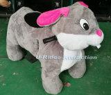 大型動物の灰色マウス乗車