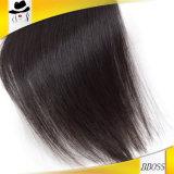 Muitos formam a brasileiro da importação 100% cabelo público natural