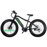 Ebike Att004 Hot Selling Electric Bike 250W MID Drive Electric Bicycle를 달성한다