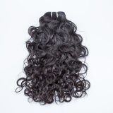 Virgin 인도 사람 자연적으로 곱슬 머리 비꼬인 곱슬머리 연장