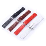 Faixa de relógio de alta qualidade do couro do crocodilo