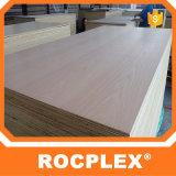 Rocplex 건축 합판 구체적인 셔터를 닫는 널 1220mm*2440mm*3mm--21mm