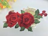 Zona calda/Applique del ricamo del fiore di vendita 3D per il vestito/i vestiti