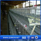 De Laag van de Kip van de Kooi van het Netwerk van de draad voor de Landbouwbedrijven van Kenia