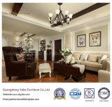 Отель Salable мебель с гостиной мебель (YB-C-2)