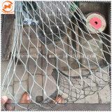 Aves de jaula de acero inoxidable de la cuerda de compensación de cerco de malla
