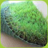 اصطناعيّة مرو عشب لأنّ زخرفة ويرتّب عشب عشب رخيصة
