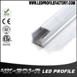 L'extrusion en aluminium de lumière de la Manche de profil de 4201 DEL pour enterrent l'éclairage