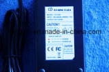 カスタマイズされた12V/24V/36V/48V/60V/72V鉛酸蓄電池の充電器SLAの充電器