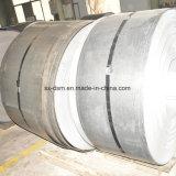 Bobina laminata a caldo dell'acciaio inossidabile di Tisco di alta qualità