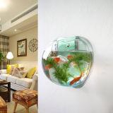 Parede acrílica creativa de Apple que pendura o mini tanque de peixes