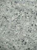 Losas de granito Perla China Blue&Mosaicos pisos de granito&Albañilería