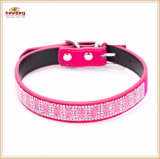 La Chine Six couleurs Strass Bling chien chat colliers (KC0154)