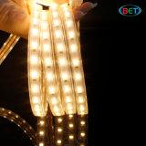 ETL 옥외 50m/Roll 코드 밧줄 빛 LED는 120V 5630를 분리한다