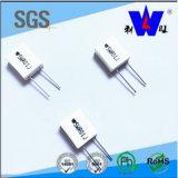 Weerstand van Rgc van de hoge Macht de Ceramische Ingepakte Wirewound met RoHS