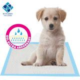 Saugfähige Trainings-Extraauflage für Hunde haftete zuhause