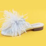 Тапочки слайдера пятки белых шариков повелительниц низкие для женщин с шерстью