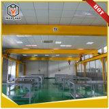 4 톤 단 하나 대들보 천장 기중기 (HD4T)