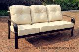 Swivel&Glide Loveseat gesetzte Gussaluminium-Möbel für Garten