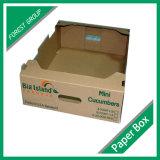 상단과 바닥 물결 모양 판지 상자