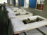 Tableau thermique de massage de jade, bâti de massage pour des soins de santé
