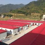 Nouvelle structure en acier préfabriqués Bâtiment de l'atelier d'entrepôt pour la vente