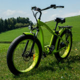 Bici elettrica della gomma grassa della spiaggia per uso degli uomini