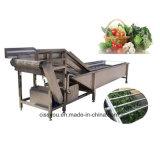 Multifunctional Légumes Fruits Lavage machine de traitement de nettoyage de la rondelle (WSQP)